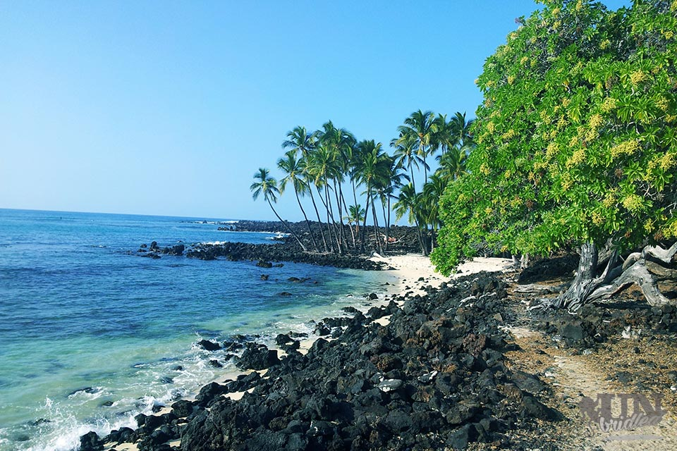 Beach with black lava rocks and a white sand beach too, palmtrees and crystal-clear ocean water are the travel reasons to see this place.