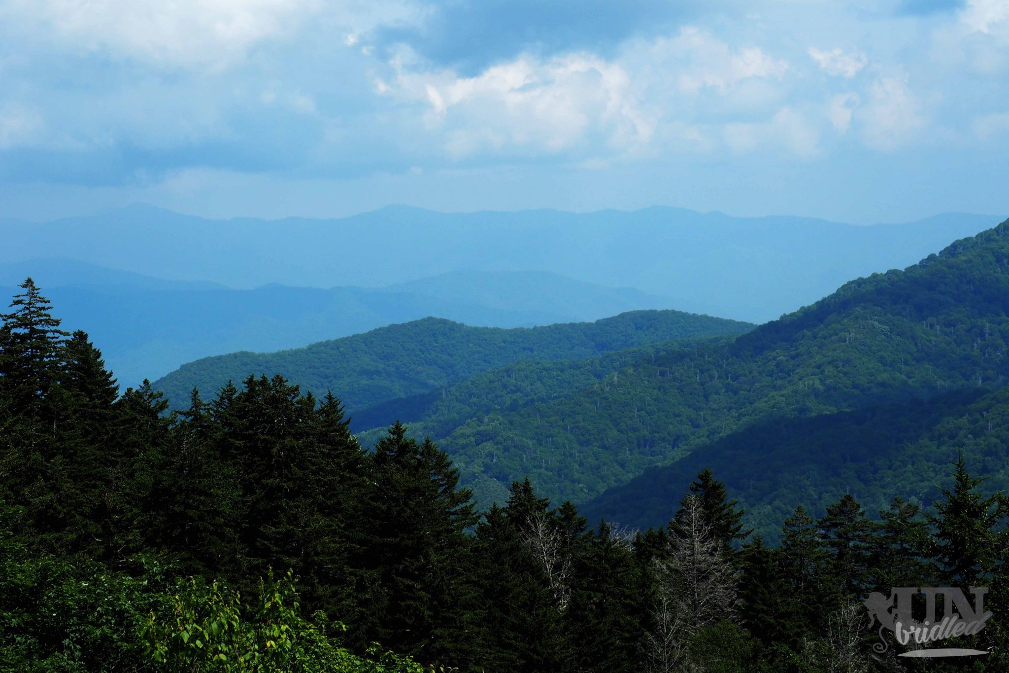 The smoky mountains national park: The mountains in the front are good visible, the mountains in the back are just blue shapes