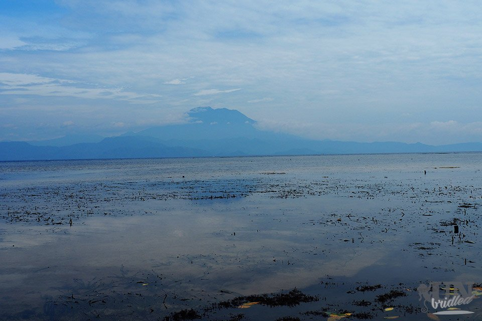 View on mount Agung from the mangrove forest in Nusa Lembongan
