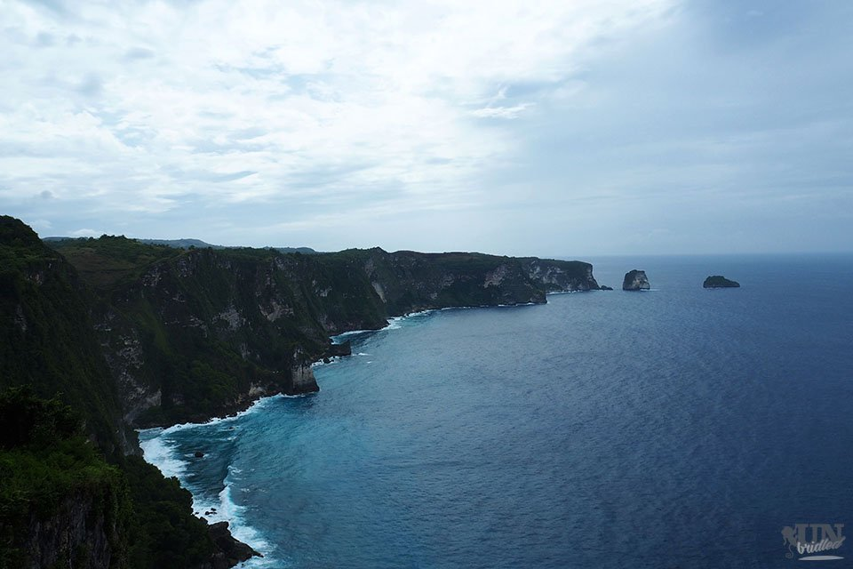 The coast of Nusa Penida is a limestone cliff, that is habitated in lush green