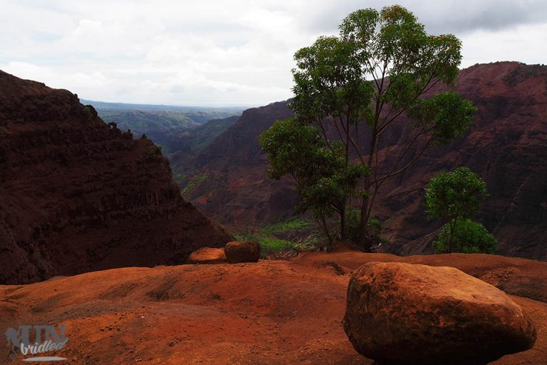 Intensiv rote Felsen im Waimea Canyon auf Kauai