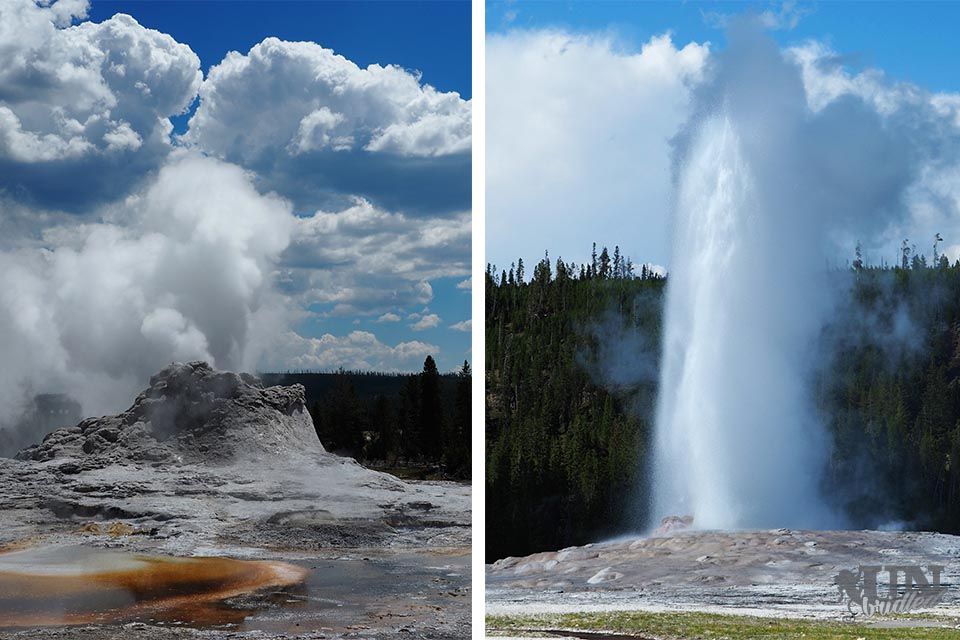 Castle Geyser (left) vs. Old Faithful (right) in Yellowstone National Park