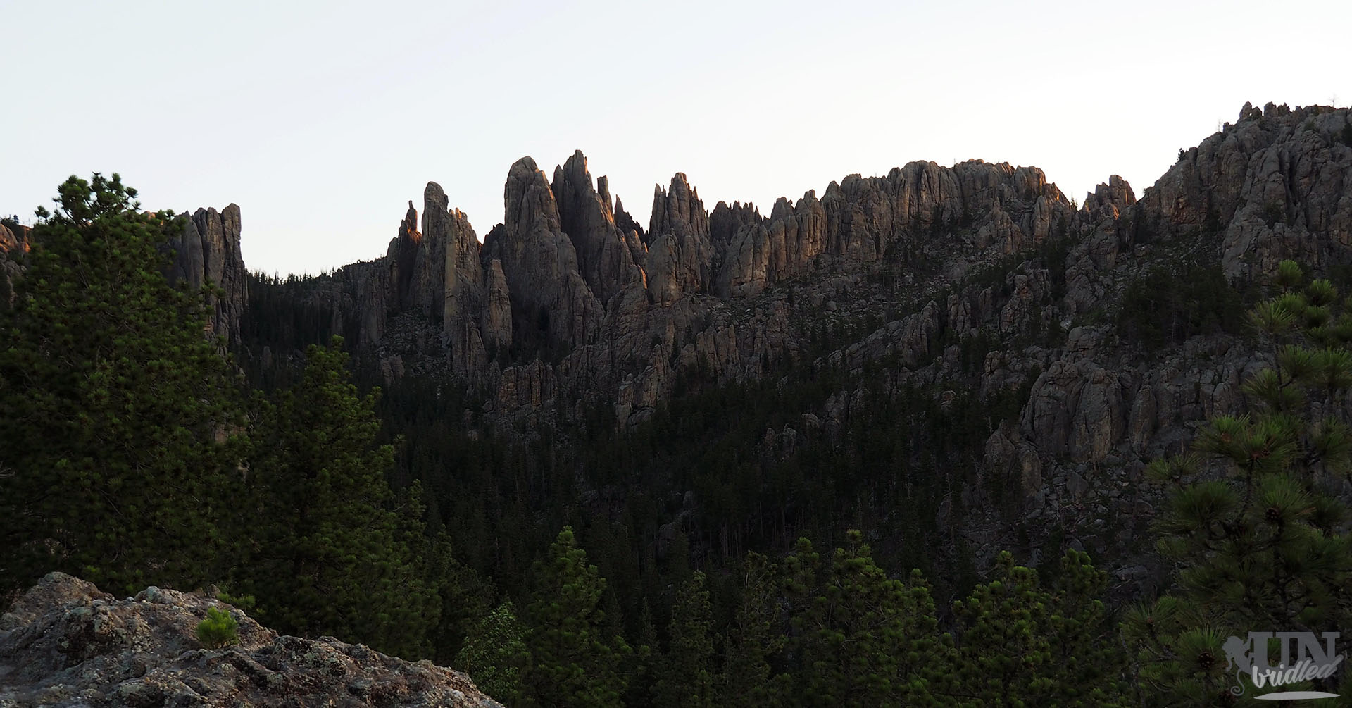 Mountains that look like needles in Custer State Park
