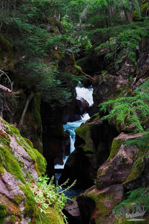 The river gorge at Avalanche trail, Glacier National Park