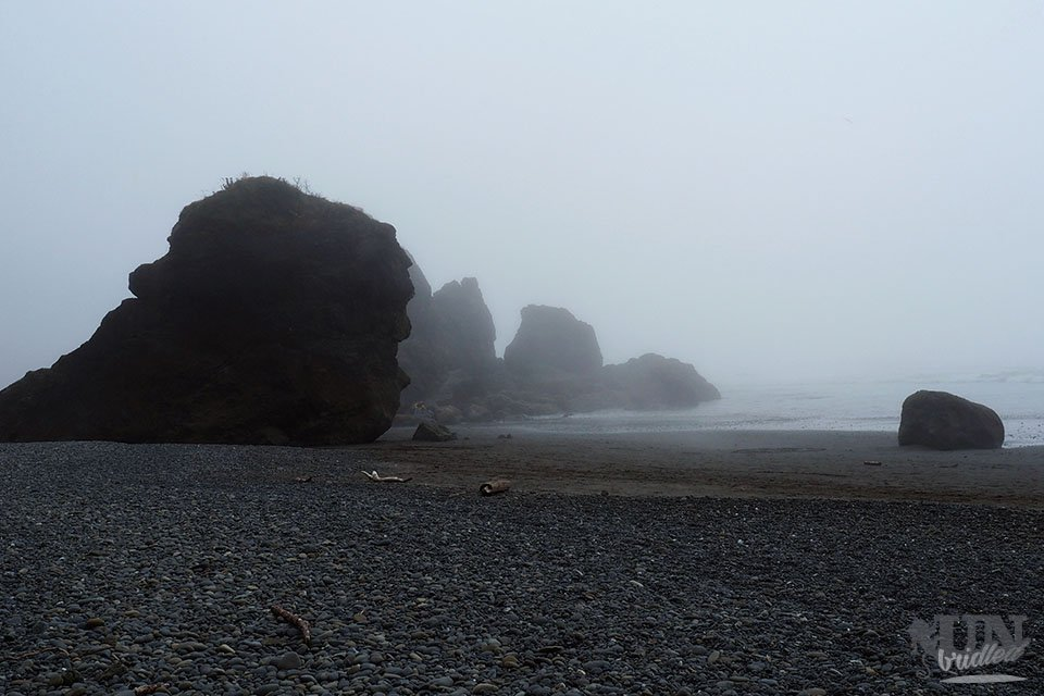 The foggy coast at Olympic National Park with huge black rocks and a black pebble beach