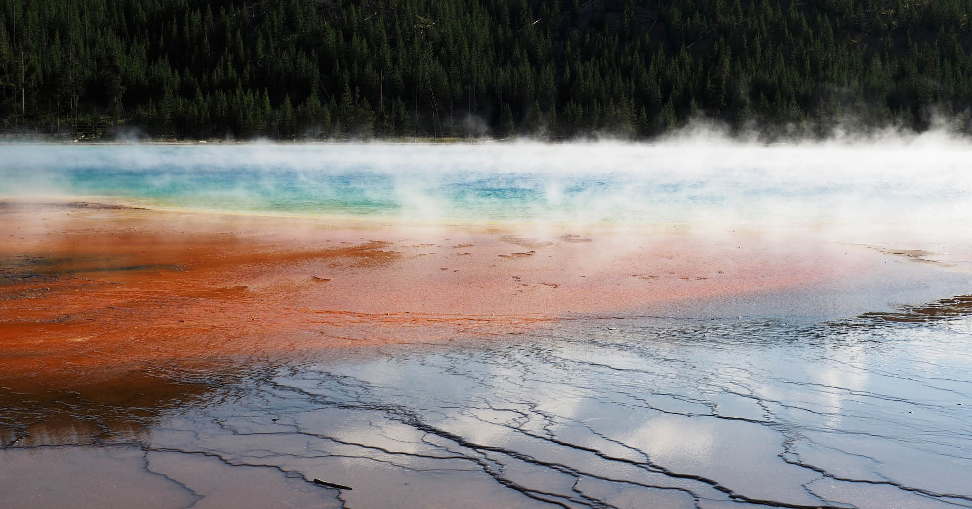 The Grand Prismatic of the Yellowstone National Park