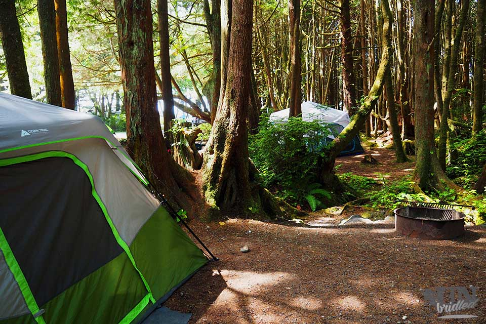 Camping in the U.S. - Campground at Olympic National Park