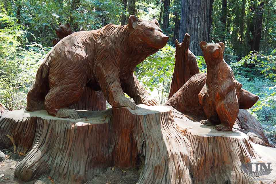 Bears carved from wood