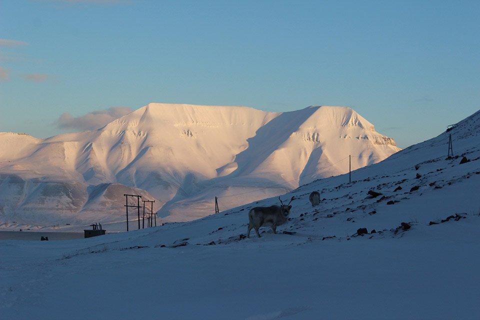 Spitzbergen im Norden Europas für Outdoor-Junkies