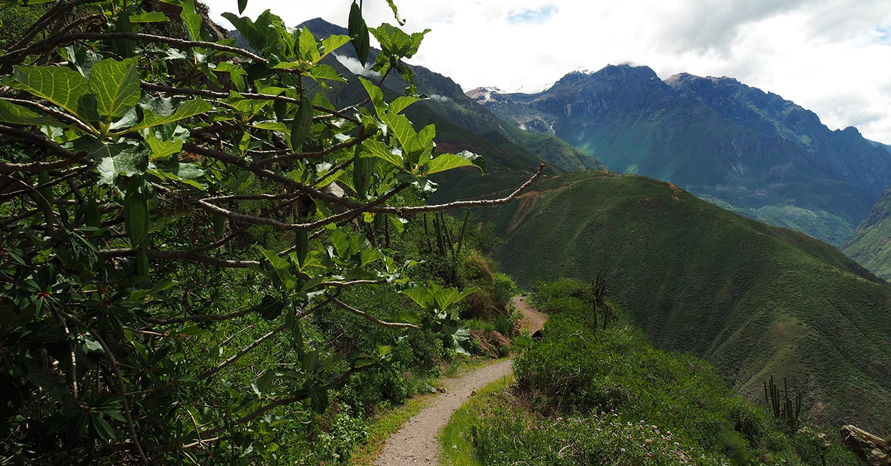 Trail in the mountains as part of a trek the Colca Canyon without a guide