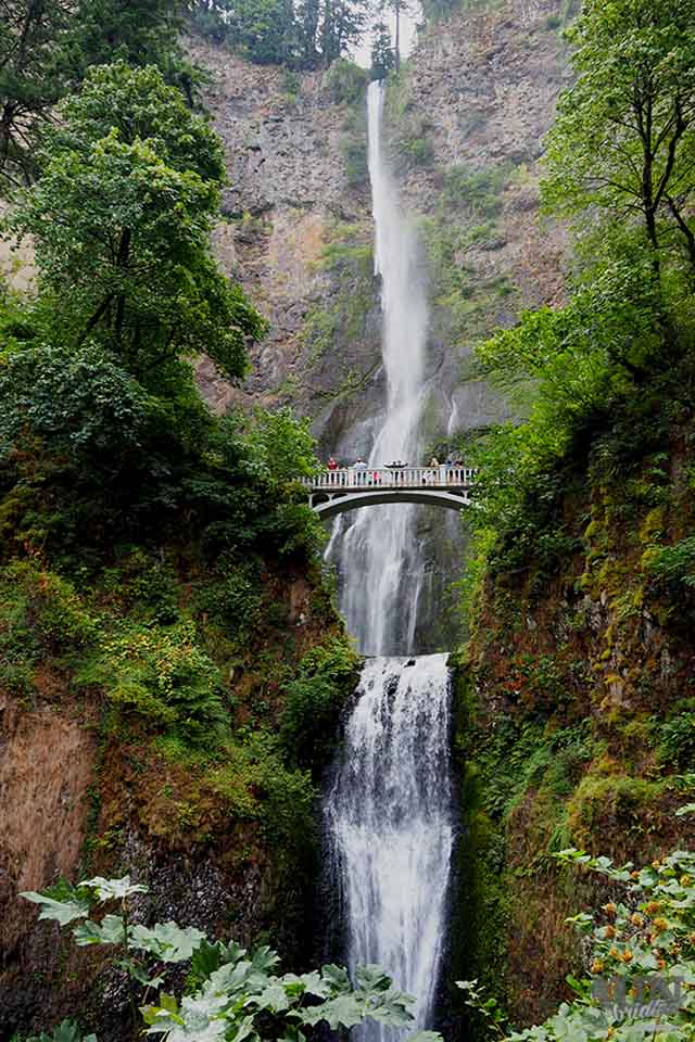 Waterfall with a bridge at Columbia River Gorge