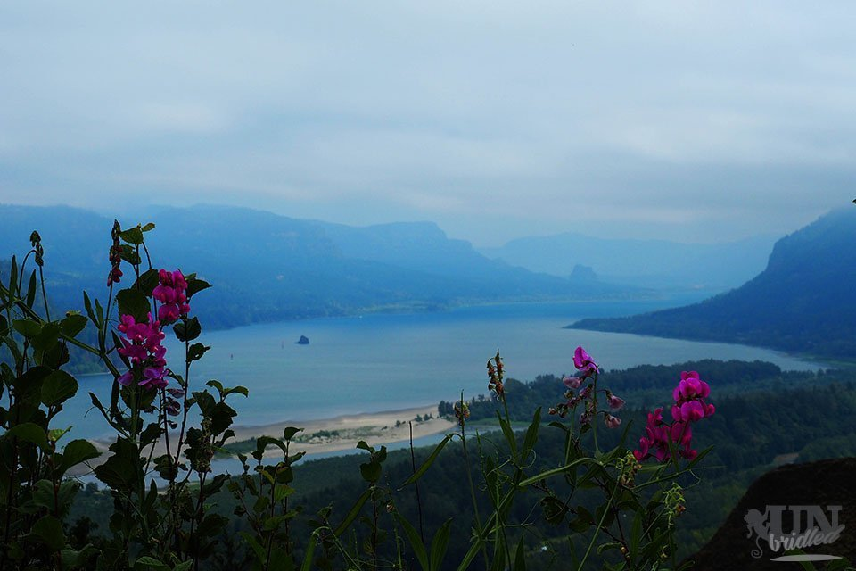 View of Columbia River and mountains