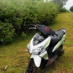 Scooter/moped on a green meadow with the text: Moped rentals - Bali