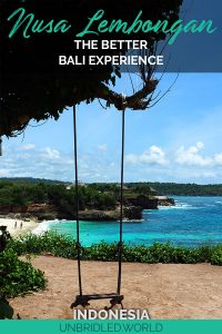 Swing in front of a beautiful beach scene with the text: Nusa Lembongan - The better Bali Experience