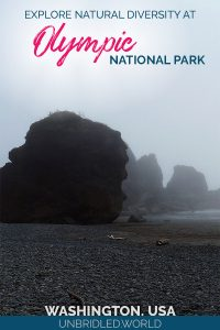 Mystic coastal scene with the text: Explore natural diversity at Olympic National Park