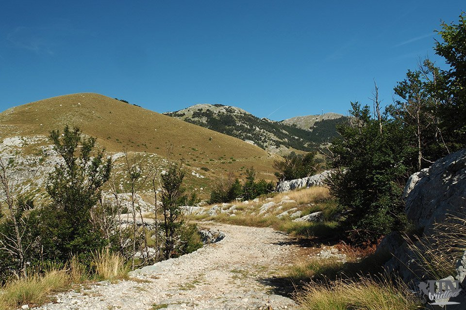 Rocky hiking path to Dolovi in Lovcen National Park