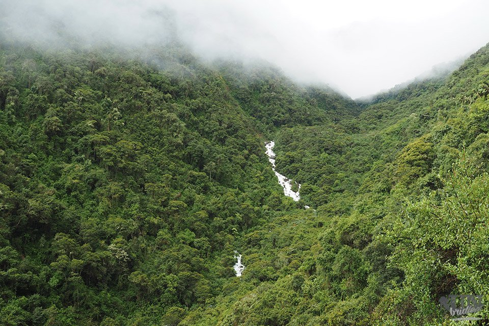 A valley with a waterfall and tropical trees, clouds are low